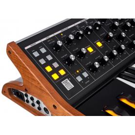 MOOG SUBSEQUENT 25 sintetizzatore parafonico 25 tasti