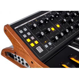 MOOG SUBSEQUENT 25 synth 25 keys