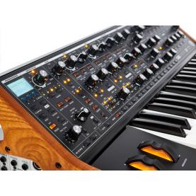 MOOG SUBSEQUENT 37 sintetizzatore analogico parafonico 37 tasti