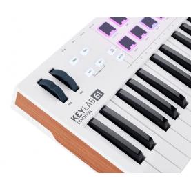 ARTURIA KEYLAB ESSENTIAL 61 TASTIERA MIDI USB 61 tasti sp gratis