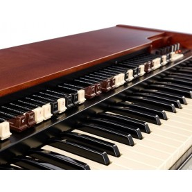 HAMMOND XK5 organ 73 keys