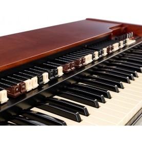 HAMMOND XK5 ORGANO 73 TASTI MIDI/USB CON TONEWHEEL VIRTUALI